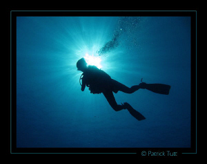 Beginning of the dive is always a pleasure to start divin... by Patrick Tutt 